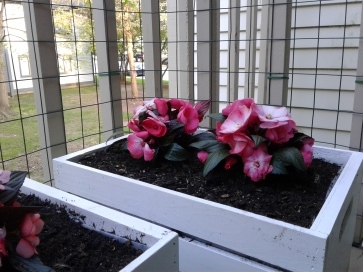 White crate planters with flowers