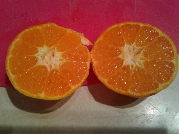 A mandarin orange cut in two