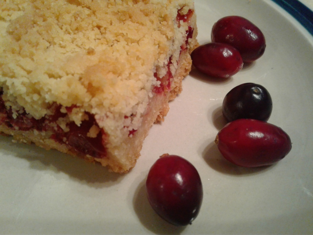 Plate with cranberry bar and fresh cranberries