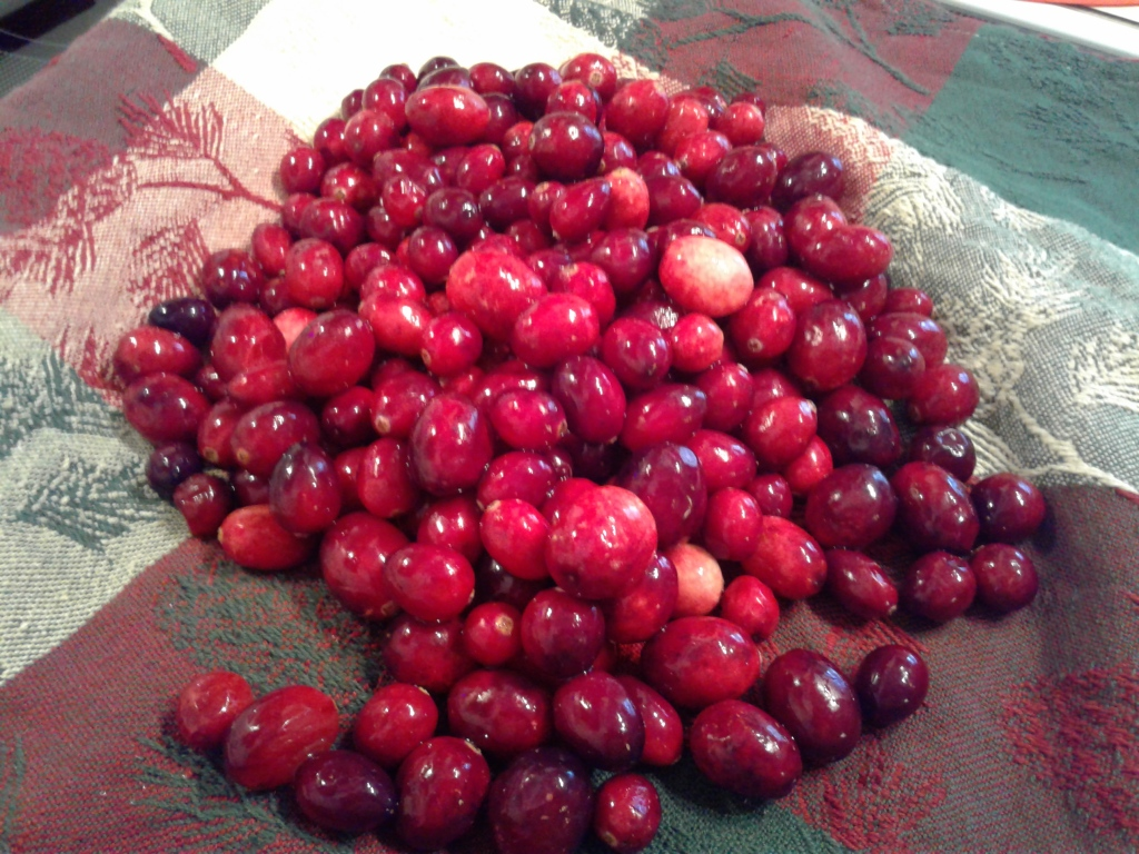 Whole fresh cranberries on a towel